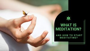 Read more about the article What is Meditation? And How to Start Meditating?