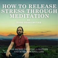 How To Release Stress Through Meditation - Todd Perelmuter.png